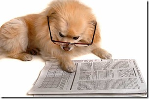 Dog reading paper